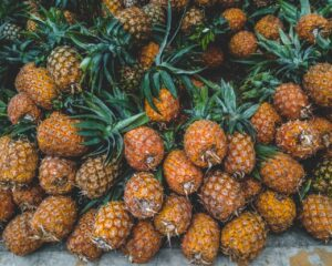 Pineapples take two years to grow.